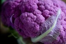 Spectrum > Lilac, Lavender, Purple