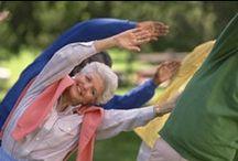 Senioren, Activiteiten en Ondersteuning