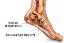 Voeten - Plantaire/Hiel/Achilles aandoeningen