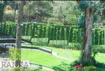 Jardín Ranka / Ranka follaje sintético no pretende sustituir a la naturaleza se puede utilizar como complemento para proyectos de paisajismo. El siguiente proyecto se utilizo Ranka para forrar el muro colindante y así tener un jardín hermoso en poco tiempo.