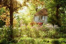 Cottage   , living★★ / by päivi p