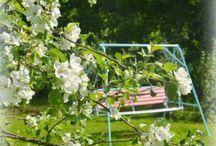 Days in the Garden - Päivät Puutarhassa / Pretty Gardens
