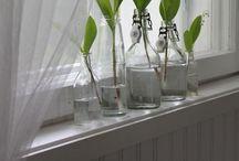 Kielo Koti / Lily of the Valley Home ❤️