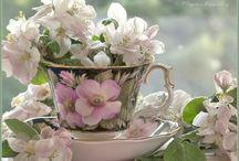 Apple Blossom Cottage / ❤️