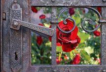 The Walled Garden / ❤️