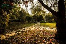 Biz Doğalız! / We're Natural! / Viverde Hotel Berke Ranch doğal alanlarda kurulu bir tatil cennetidir.