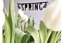 Lente volgens DistelRoos / Lente volgens DistelRoos is een lekker licht interieur met veel wit maar afgewisseld met grijs voor het stoere accent. Deze lente zijn pastels erg hot en hip! Tevens is de cactus terug, zet ze bijvoorbeeld in groepjes in witte potjes zodat het lekker fris oogt :-)