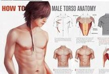 Characters Tutorial / Anatomic and Tutorial