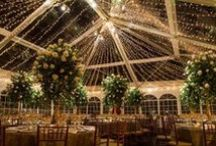 Weddings Under the Stars / For a magical evening under the light of the stars.