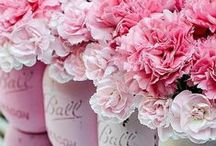 Pink my day! / One color a day!