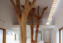 Boa arquitetura / A boa  arquitetura é aquela que nos surpreeende
