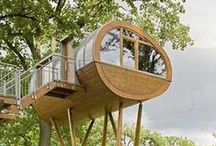 Tree houses / The most amazing tree houses from around the world! Some tree houses are hotels, others are simply put in a backyard, but all of them are inspiring and very inventive and creative.