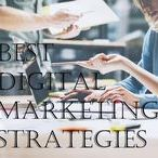 Blogs&posts | Rabbits / http://rankyourrabbit.com/15-step-guidelines-for-the-best-digital-marketing-strategy-in-2017-and-beyond/