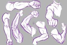 Character//Hands-Arms