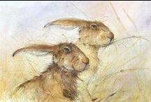 Animals//Mouse-Rabbit-Cincilla-GuineaPigs