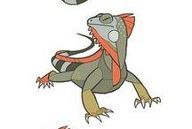 Animals//Lizard-Crocodile-Frog-Tortoise