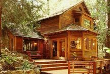 Cabin Fever / by Vanessa Barclay
