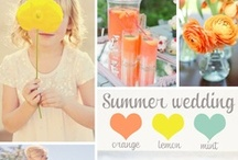 Wedding Themes & Colors