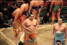 Sumo Wrestling / Sumo Wrestling