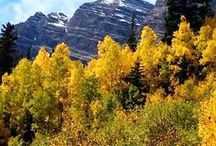 Colorado Rocky Mountain Adventure / Explore Colorado's premier playground - Aspen, Redstone, Glenwood Springs http://www.atyourpacebiking.com/product/glenwood-springs-aspen/ / by At Your Pace Cycling