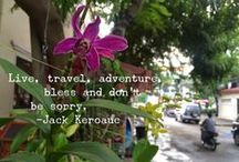 Travel / Capturing the joy and lessons of my journey across this planet.