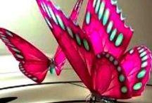 ~ birds & butterflies ~