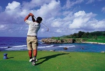 Sports and Golf / Images from Guam's sporting scene, including pictures from a few of the island's seven professional golf courses. / by Guam Visitors Bureau