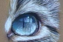 DRAWING VI: NATURE, ANIMALS