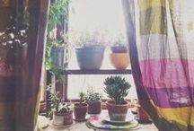 *PLANTIES & FLOWERS*