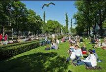 Helsinki / My Helsinki.