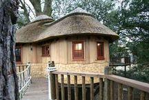 Treehouses / Beautiful and unusual tree houses.