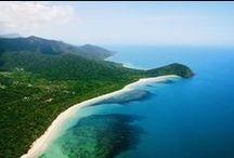 Beaches of Port Douglas and Daintree / Our region boasts spectacular scenery along the coastline, fringed by palms and World Heritage rainforest. From the iconic Four Mile Beach at Port Douglas to the hidden gem of Emmagen, deep in the Daintree Rainforest, there is one to make your favourite.