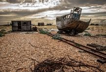 Enjoy Dungeness / All that's dungeness. / by Maria's Stuff