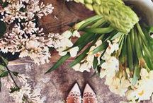 Feeling Green / I <3 plants / by Alexandra Magoulas