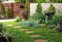 landscaping ideas / hardy plant combinations for sun, shade, sloped or flat sites, formal, contemporary or natural style