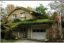 green roof basics and inspiration