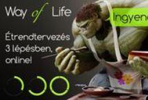 Way of Life - Kampányok / http://wayoflife.hu/