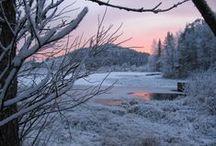 Immeljärvi