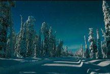 Finnish Lapland / Lapland, Northern Lights, Santa Claus, Husky, Reindeer, snow, the midnight sun, winter,