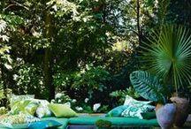 #24 Jungle Tropicale Urbaine / 1pulsion décorative Sélection Outdoor Inspirations/Ambiances/Produits