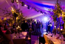 Weddings / Country Wedding in the Cotswolds