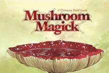 mushroom magic / by Lily Greene