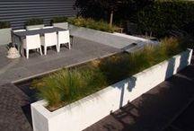 Eigen tuinontwerp projecten / My projects