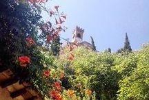 """Ti racconto Brisighella d'estate... / Brisighella """"raccontata"""" con gli scatti, le immagini e le suggestioni dei suoi visitatori ed ospiti."""