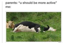 text posts / aka the reason for my existence