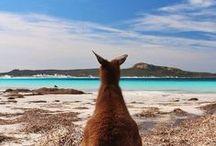 Australian Scenery.