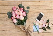 Collection Valentin 2016 / Pour faire plaisir à ton amour offre lui des fleurs. Après tu pourras lui demander ce que tu veux!  Livraison de la collection Valentin à partir du 11 février seulement.   http://www.plantzy.com/collections/saint-valentin