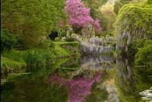 Giardini ad Arte / Di volta in volta è divino, segreto, misterioso. Può essere privato e intimo. Fatto sta che il giardino è uno spazio da vivere, non solo da mostrare. Che può diventare uno spazio artistico all'aperto, per la gioia degli occhi e dell'anima!
