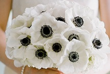 Bouquets / Beautiful bouquets to inspire your style