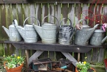 Watering Cans / by Cindy O'Dear